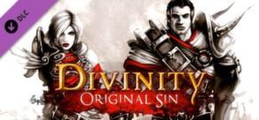 Divinity: Original Sin - Source Hunter. Дополнение